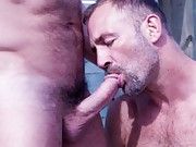 Carlo and Parker are a fucktastic treat to watch. Parker loves his balls pulled and Carlo is an expert in ass play.