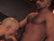 Hairy, muscular, hung -  now that