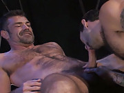 Bruno Bond and Steve Cruz share some of that real-life passion for the camera in this steamy shoot. Lovers on and off the set, the muscled furballs don some sportswear and have an awesome suck and fuck one-on-one. The 69er towards the beginning of the vid