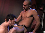 Tristan Phoenix does his best to deepthroat Antonio Biaggi in this scene, but he