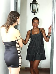 Two hot shemale babes exploring each other