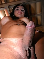 hung brazilian shemale Suzy posing naked for the camera