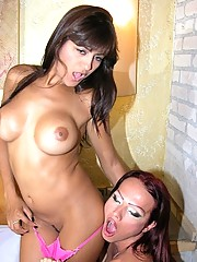 hot tgirl Sashenka getting cock sucked by a hungry female