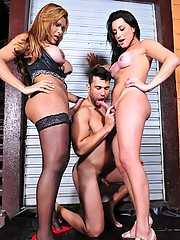 A dude playing with two smoking hot tgirls