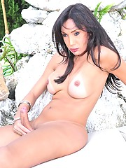 Naughty shemale Isabelle Frazao posing outdoors