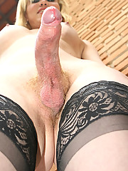 Sexy transexual Grazielly from Santo Andre wants you to explore all the pleasures she can offer.