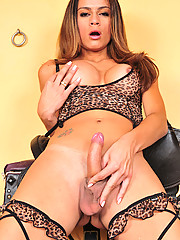 Brazilian tranny Kamila Smith looks absolutely sexy in her leopard print lingerie. Kamila wants a guy who is willing to pull off her garter belt with his teeth and then fuck her feep from behind!