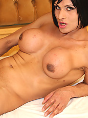 Chelsea is one of the raunchiest trannies on Brazilian Transsexuals! She\