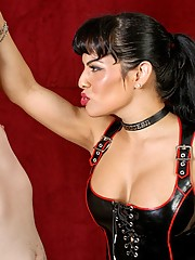 Mistress Foxxy is in a playful mood and she LOVES playing with her submissive little boy toys. Drake is new to the dungeon and Mistress Foxxy breaks him in with a variety of pains and pleasures