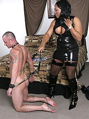 Mistress Maddison is a full figured, 27 yr old shemale dominatrix from the Los Angeles area.