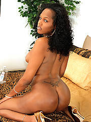 Black tgirl shows off her big cock and ass