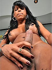Black tranny strips and plays with her big dick