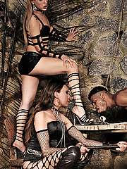 Three shemale dommes work a slave over