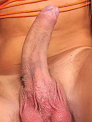 Shemale hottie shows off her big cock