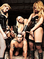 Four shemales brutalizing a willing slave