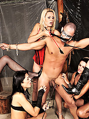 Poor guy gangbanged by four shemale dommes