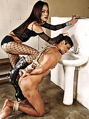 Shemale Domme Idabeli Killer in action