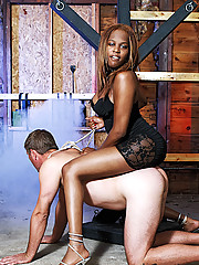 Badass black shemale mistress Brownie in action