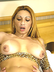 Big breasted tranny babe getting some action