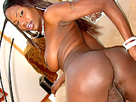 Thick Black tranny with a rock hard cock and sexy curves