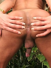Hot blue bikini tranny takes a hot hard black cock in her sweet ass in these unbelievable poolside fuck pics