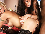 Hot TS Olivia Love gets a big fat black cock for her bday