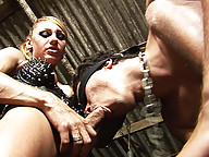 Chained submissive and three shemales