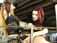 Shemale dommes humiliate and punish a submissive
