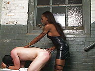 White Slave Bends Over To Be Banged By His Black Shemale Mistress