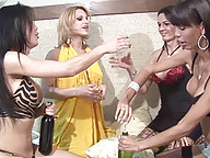 Tranny foursome sit on bed drinking wine