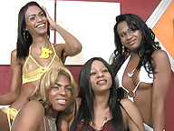 Ebony shemales have steamy foursome