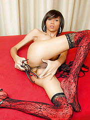 Hot ladyboy in red lacy lingerie and fuck-me shoes