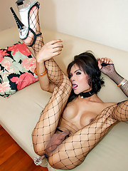 Provoking shemale teaser Ey wanks off in fishnets