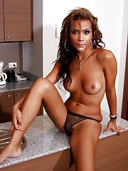 Exotical transsexual sweetheart posing