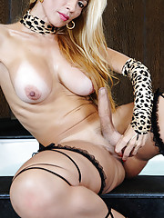 Tranny star with massive long cock!