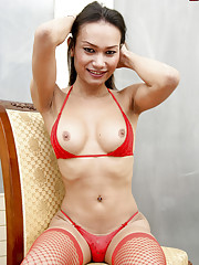 Cute brunette ladyboy with a sweet smile!