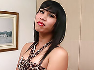 Watch kinky ladyboy wank in leopard skin