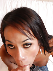 Ladyboy in skin tight jeans gives blowjob