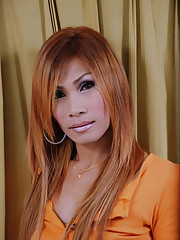 Amazing ladyboy teases lovers hard girl pole