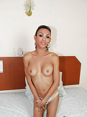 Lusty shemale gets titty fucked