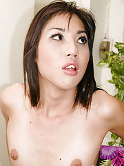 Long haired ladyboy showing off shecock