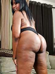Black tranny who loves blowjobs