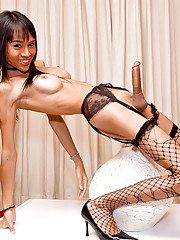 Ladyboy clad in fishnets showing her meaty wonder
