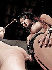 Submissive make obeys his shemale mistress