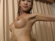 Sexy tits on this shecock stroking ladyboy