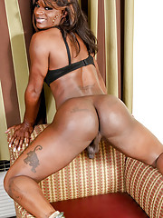 Quiet black tgirl with a wild side