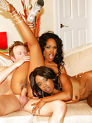 1 White Dick & 2 Black Asses