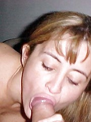 Photo gallery of a mix of amateur cocksucking wild babes