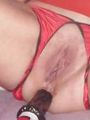 Picture collection of amateur naughty wild babes getting their assholes stuffed
