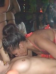 Photo gallery of amateur horny hardcore lesbian bitches
